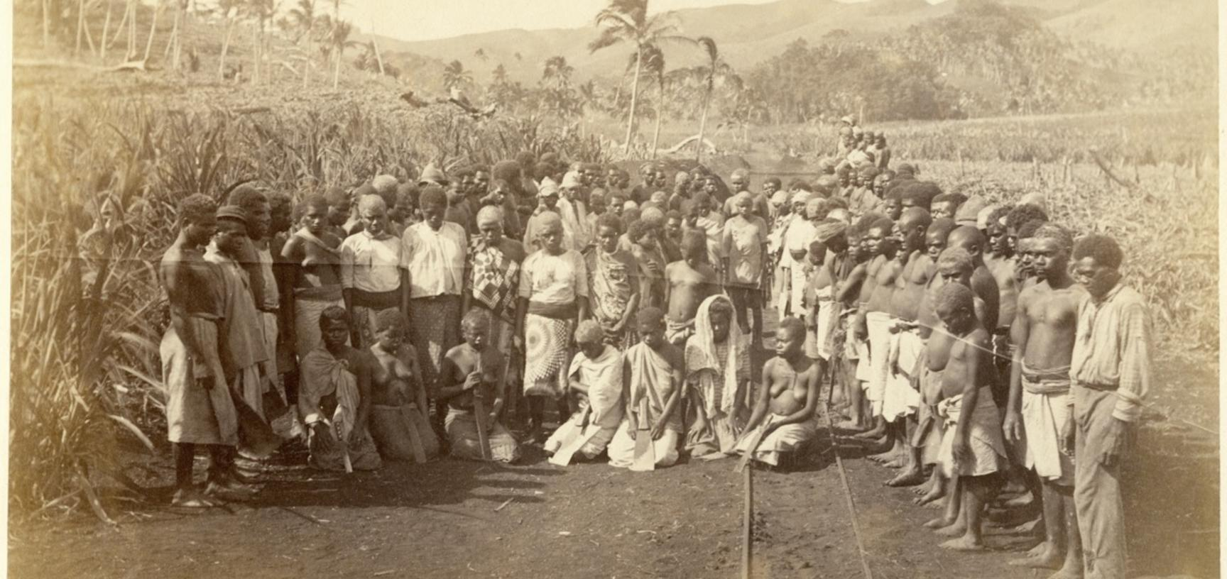 """'Muster of """"labour""""', a group portrait of agricultural workers employed in the sugar cane plantations on Viti Levu. Photograph by Alfred Burton for the Burton Brothers studio (Dunedin). Mango, Viti Levu, Fiji. 16 July 1884."""