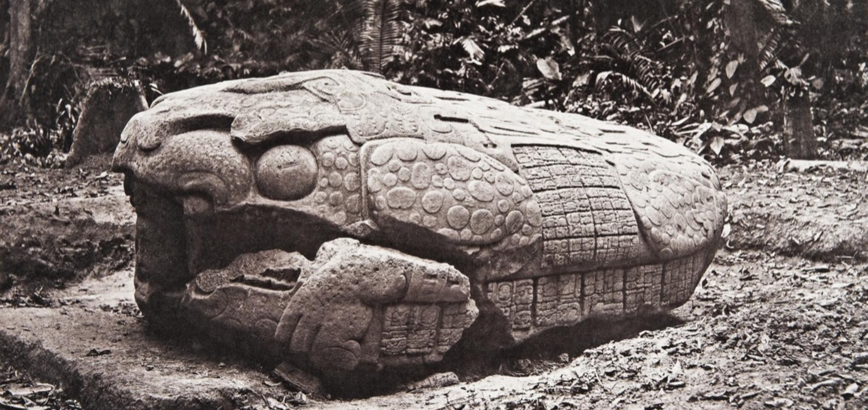 Zoomorph G (also known as Monument 7), west side, dated AD 785. The monument is now understood by scholars to represent a 'Waterlily Jaguar', with human figures wearing headdresses emerging from both ends. It was created during the first year of the reign