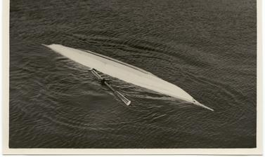 Photograph depicting one of the stages of a 'kayak roll', an exercise to enable kayakers to learn how to right themselves quickly if capsized in freezing waters. Photograph by Henry Iliffe Cozens. Greenland. 1930–1931.