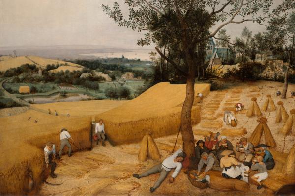 harvesters bruegel