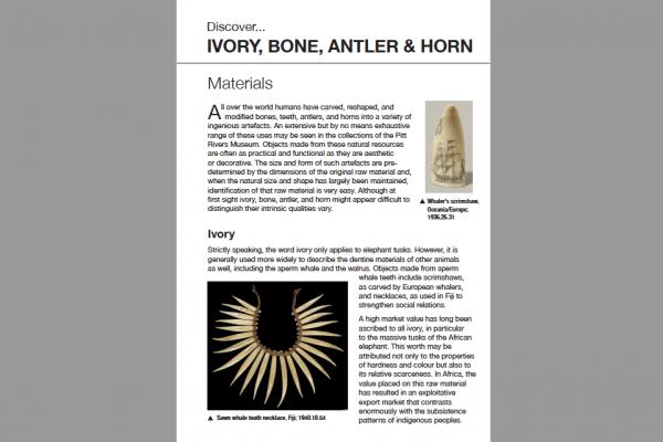 ivory bone antler horn