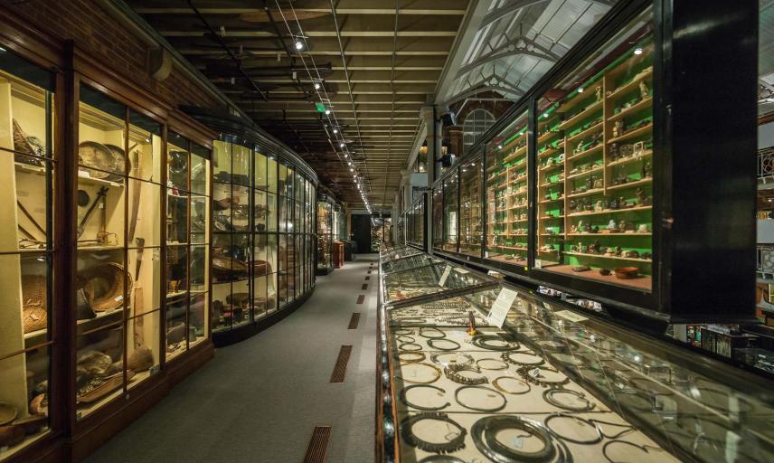 new cabinet bodyart objects displays  copy