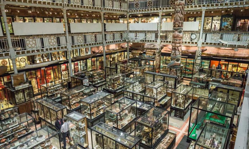pitt rivers by ian wallman 9760
